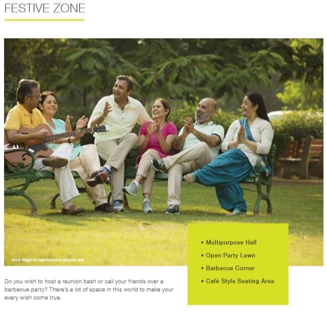 Festive Zone