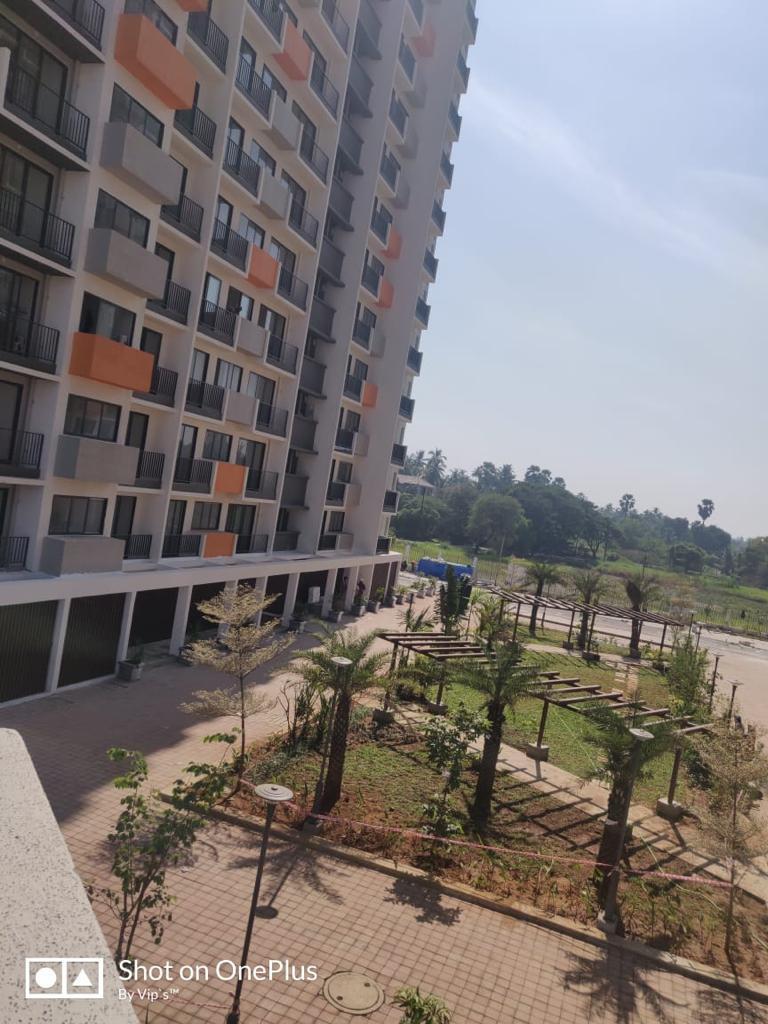 Shapoorji pallonji palm grove