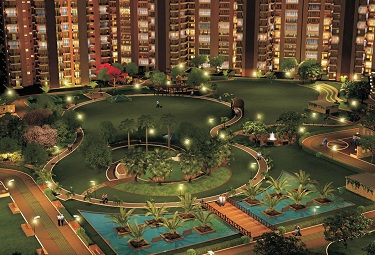 RG Luxury Homes
