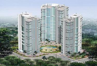 DB Orchid West View