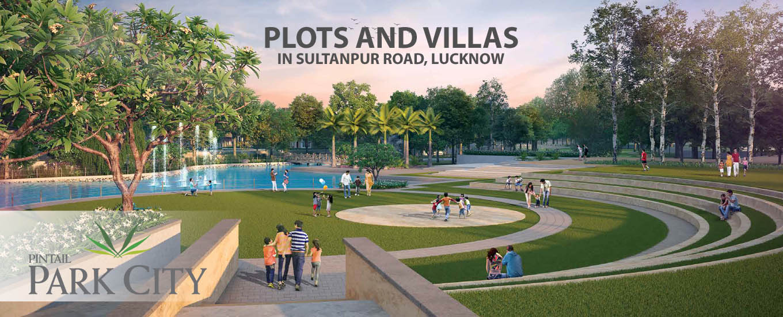 Pintail park city